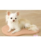 Self-Heating Small Mat for Dogs and Cats, Peach